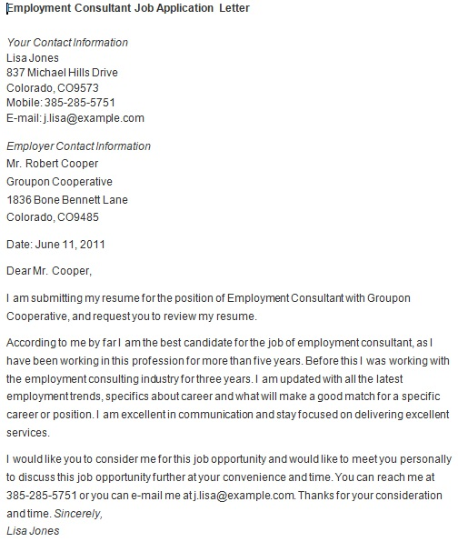 employment consultant job application letter
