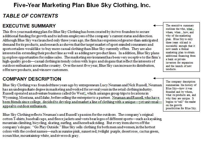 marketing plan executive summary example