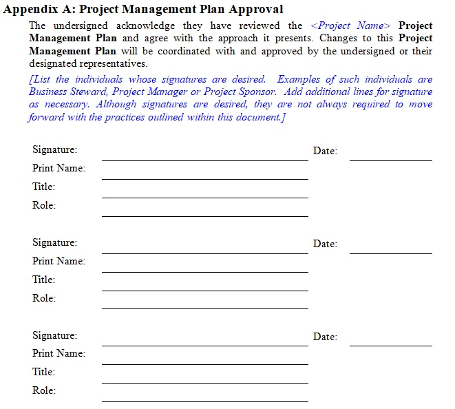 project management executive summary template