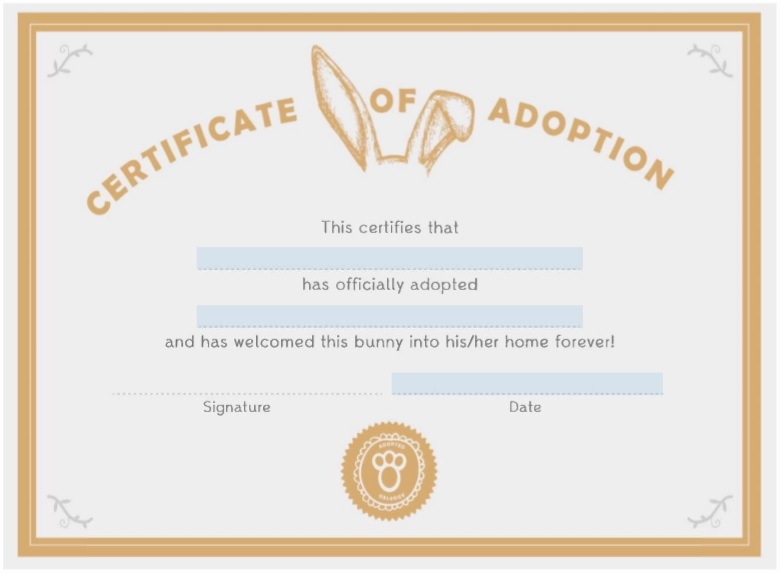 adoption certificate template pdf