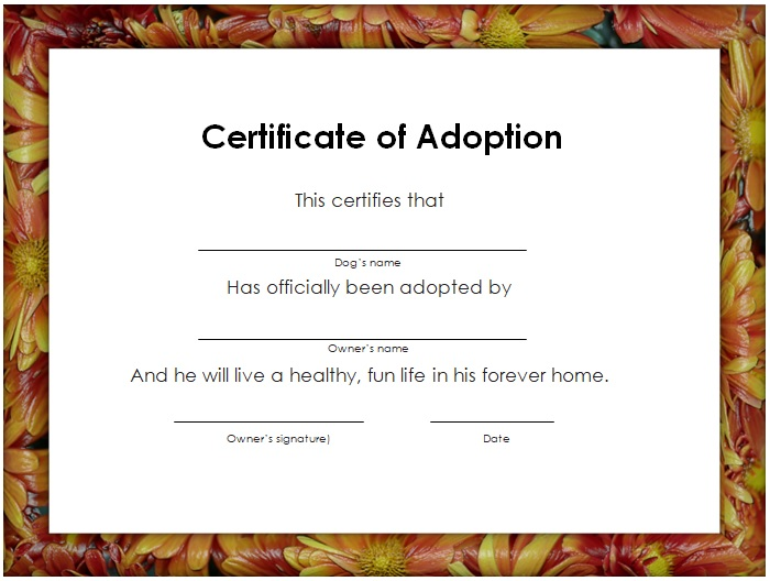 free printable adoption certificate