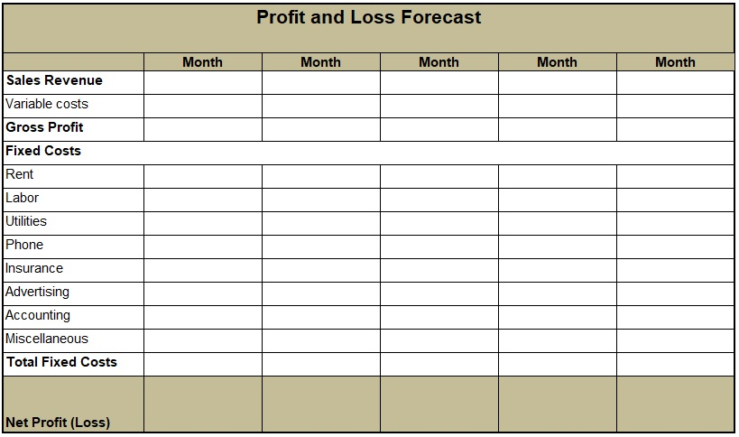 profit and loss forecast