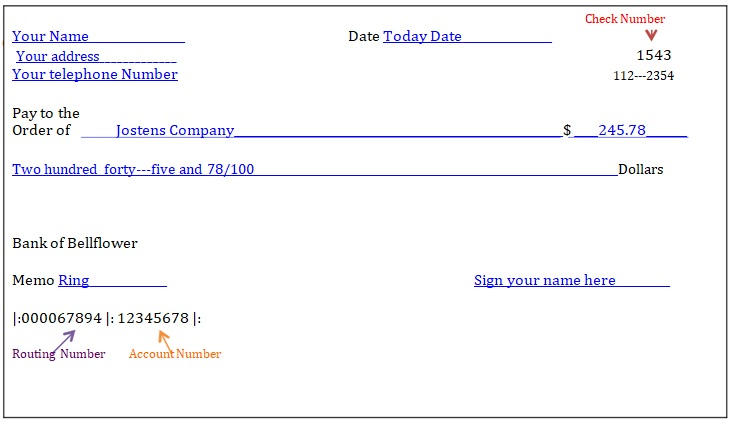 fillable blank check template