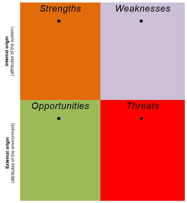 leadership swot analysis example